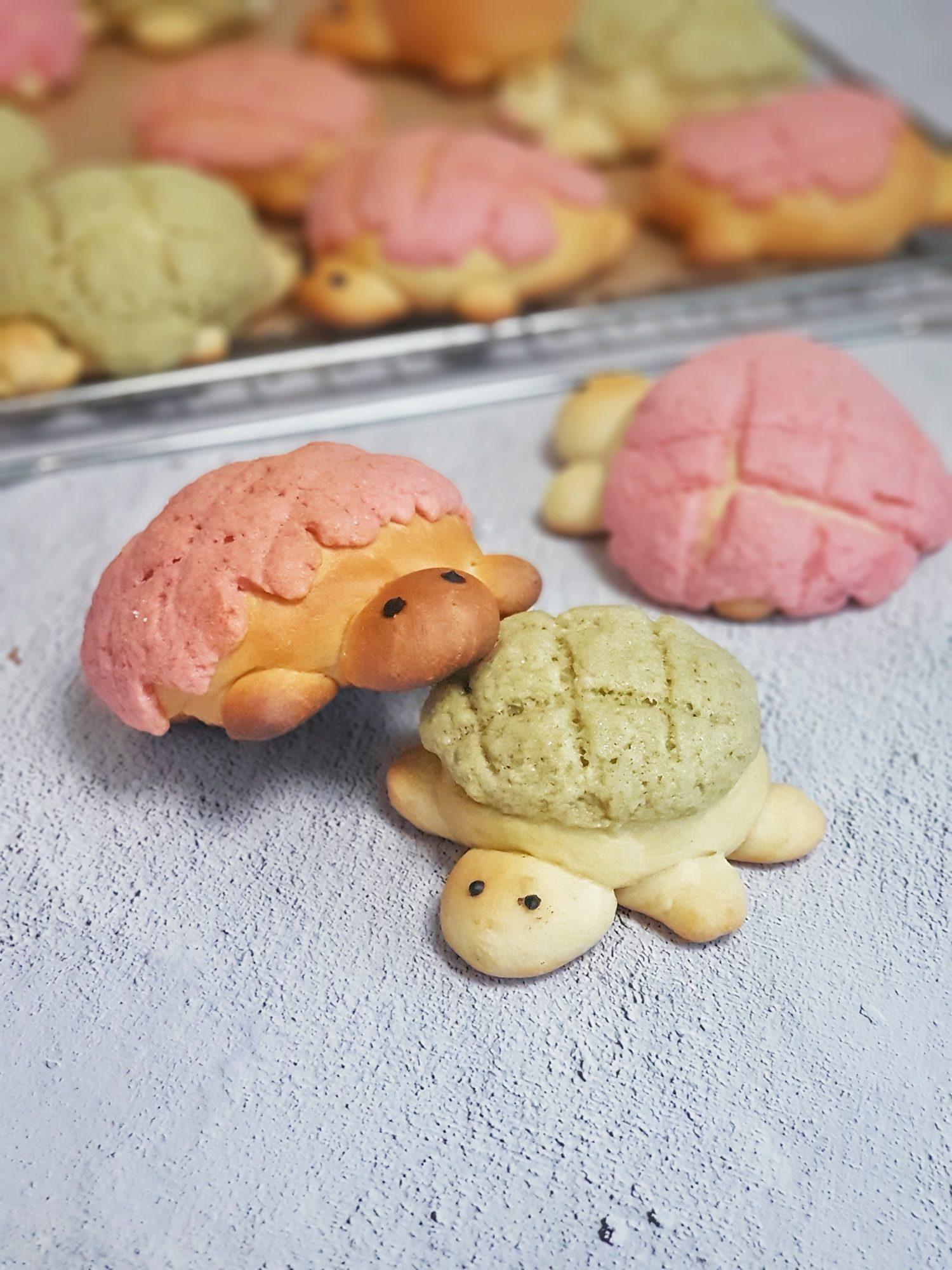 pineapple bun or turtle melon pun